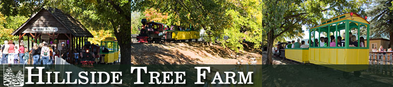 Hillside Tree Farm - Apple Ridge Express